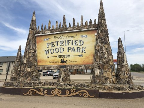 This giant sign lures visitors who pass through Lemmon on Highway 12/73 into the downtown district that is home to the Petrified Wood Park and other local businesses. Photo: Bart Pfankuch, South Dakota News Watch